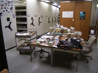 標本室全景.JPG